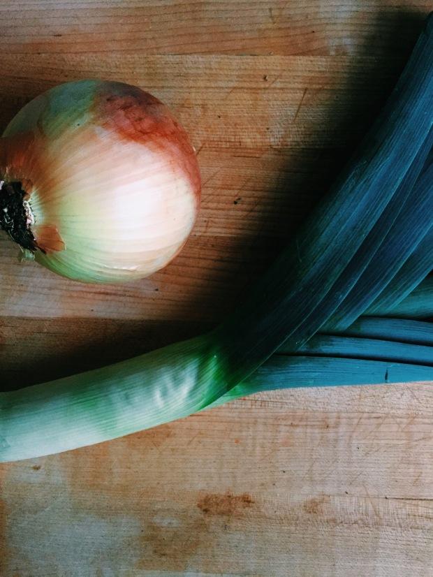 leek and onion
